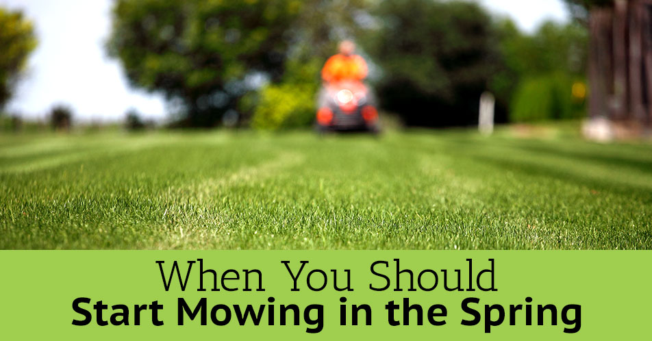 When You Should Start Mowing in the Spring