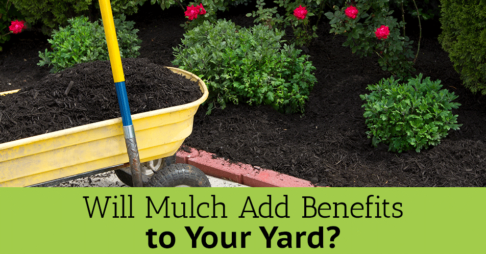 Will Mulch Add Benefits to Your Yard?