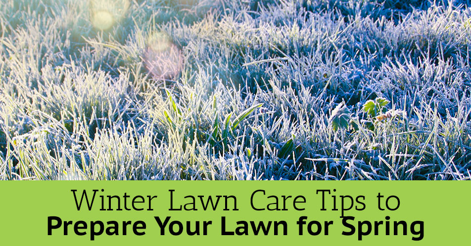 Winter Lawn Care Tips to Prepare Your Lawn for Spring