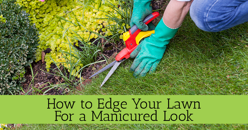 How to Edge Your Lawn for a Manicured Look