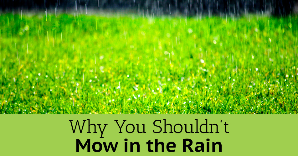 Why You Shouldn't Mow in the Rain