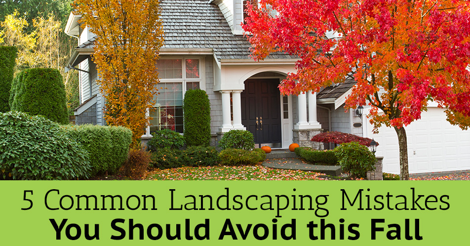 5 Common Landscaping Mistakes You Should Avoid this Fall