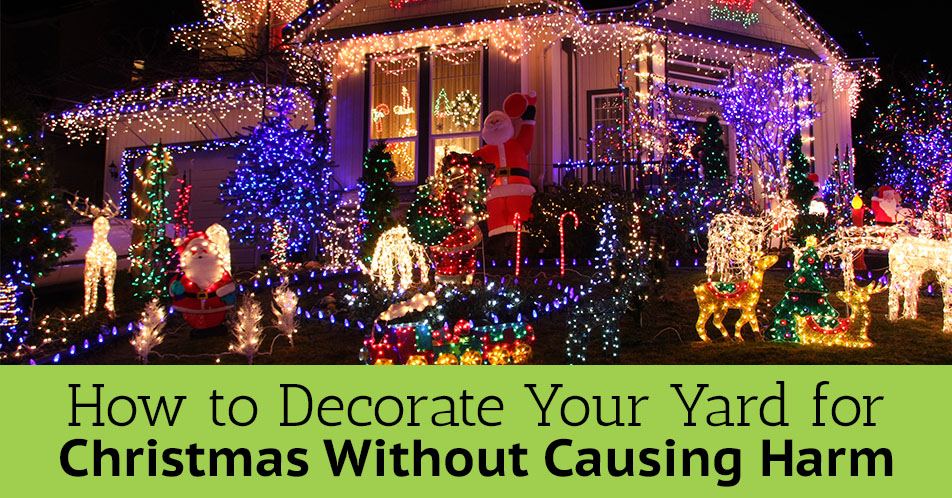 How to Decorate Your Yard for Christmas Without Causing Harm