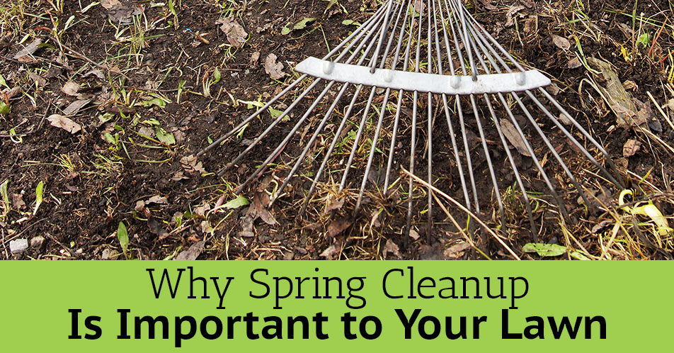 Why Spring Cleanup Is Important to Your Lawn